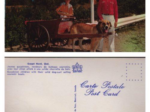 « Jeunes gaspésiens, vendeurs de bateaux souvenirs, avec leur chien attelé à une solide charrette de bois », coll. : Marie Fournier