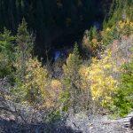 Ruisseau Ferré, date : automne 2008, photo : Blandine Mercier