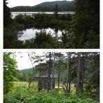 Lac Long, (en haut ) le lac; (en bas) ouache à Léopold Fournier, date : septembre 2011, photos : Blandine Mercier