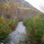 Rivière de Manche-d'Épée, date : octobre 2009, photo : B. Boucher. Vue de la rivière à proximité de la côte Croche.