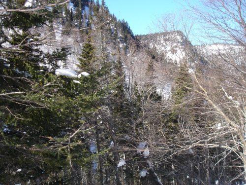 Réserve écologique de Manche-d'Épée, date : inconnue, photo : Denis Bernier. Une partie des montagnes qui entourent la réserve.