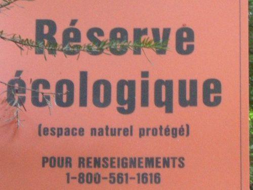 Affichette d'information clouée sur un arbre de la route de la Rivière, date : 2007, photo : B.Boucher