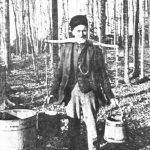 Courir les érables un joug sur les épaules, date non précisée, source : Raoul Carrier, Érablière du Lac-Beauport.